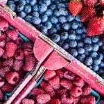 Seasonal Summer Produce